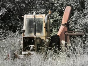 P8120043